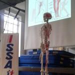 Corso di Fitness Posturale - Milano